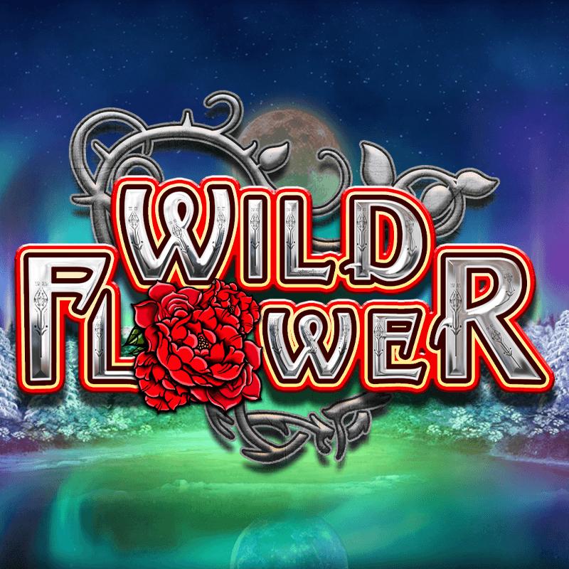 Wild Flower Featured Image