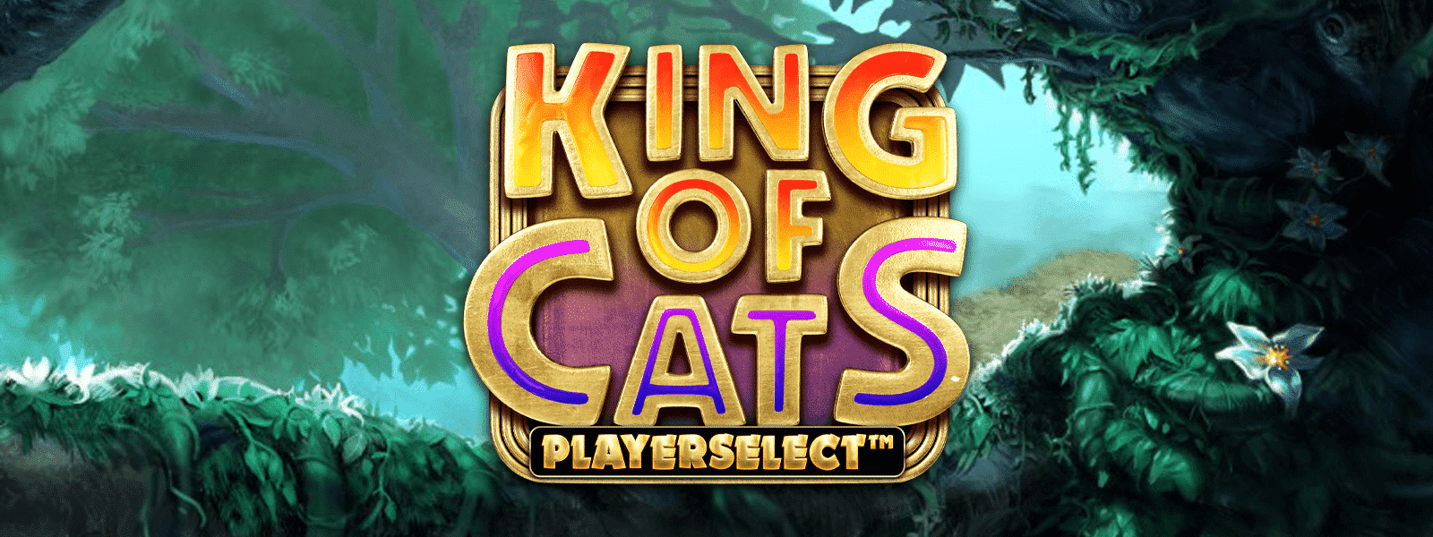 King of Cats Megaways Playerselect™ Live Launch